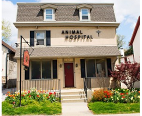 Haverford Animal Hospital