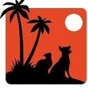 Cat Clinic at Beach Park
