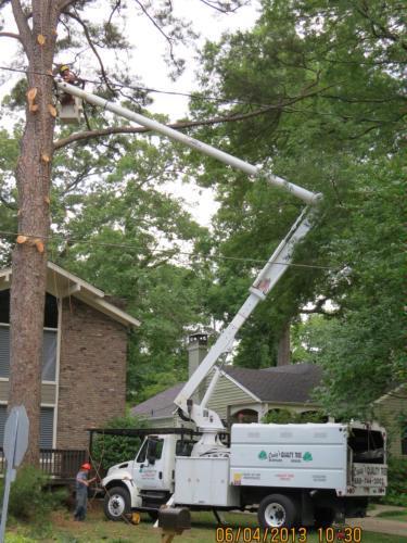 Craig's Quality Tree Service