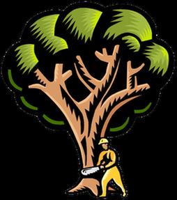 Pamlico Tree Care Llc