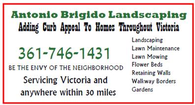 Antonio Brigido Landscaping