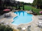 Teddy Bear Pools Spas