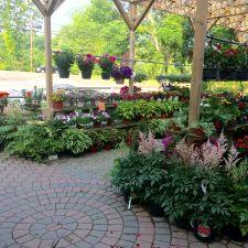 mendham garden center annandale - Mendham Garden Center