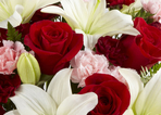 Best 20 Florists In Roanoke Rapids Nc By Superpages