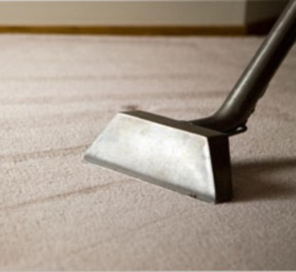 National Carpet Cleaning & Dye - 230