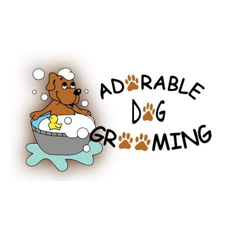 Adorable dog grooming in thornton co 2683 e 120th ave unit c3 adorable dog grooming solutioingenieria Gallery