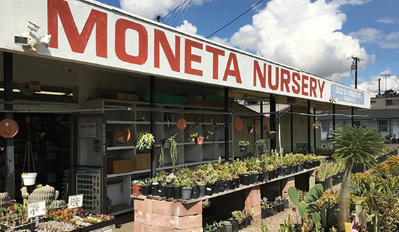 Moneta Nursery 13633 S Vermont Ave