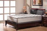 denver mattress company - Denver Mattress Company
