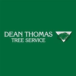 Dean Thomas Tree Landscape Service Inc