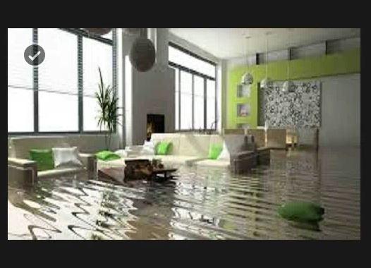 Rainbow International Carpet Cleaning & Damage Restoration