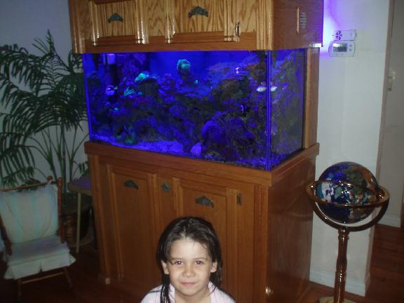 Amazing Aquariums Inc