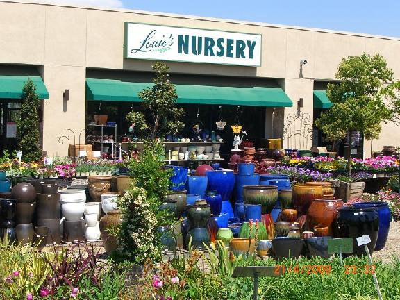 Louie S Nursery
