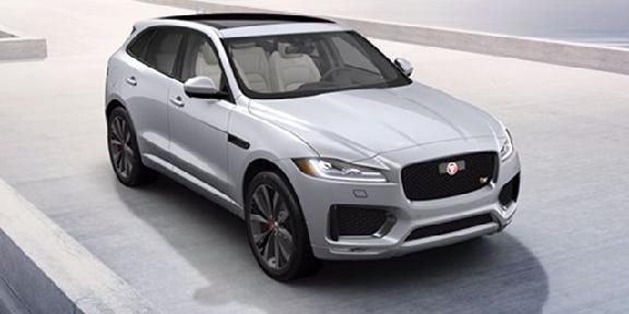 Perfect West Herr Jaguar