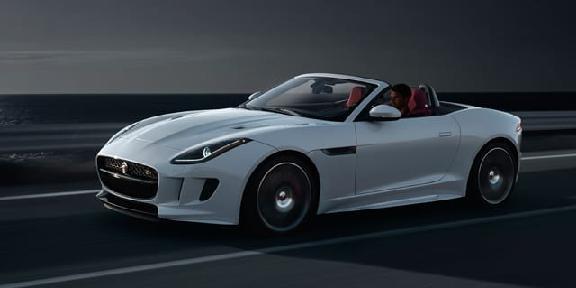 West Herr Jaguar