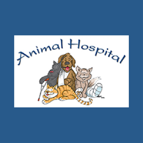 Animal Hospital 3206 Holliday Rd Wichita Falls Tx