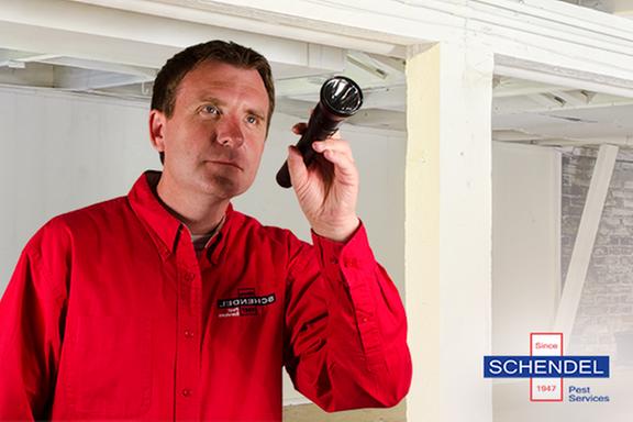 Schendel Pest Services