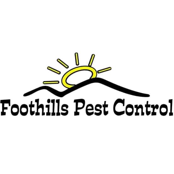 Foothills pest control in easley sc termite control solutioingenieria Gallery