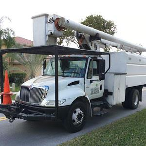Affordable Tree Service Inc Miami Dade Broward