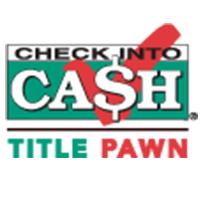 Cash advance greenville mi picture 5