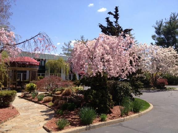 Regency Gardens Nursing And Rehabilitation Center
