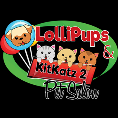 LOLLIPUPS Amp KITKATZ 2 Pet Salon