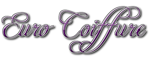 Euro Coiffure Salon And Day Spa 1 1912 Wilbraham Rd Springfield Ma