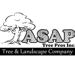 Asap Tree Pros Inc Landscape Company