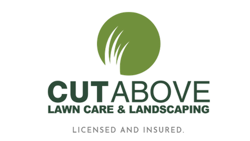 CUT ABOVE LANDSCAPING INC - CUT ABOVE LANDSCAPING INC - 8149 TARSIER AVE, New Port Richey, FL