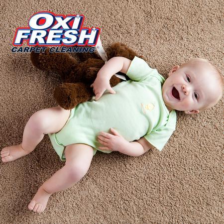 Oxi Fresh Carpet Cleaning Harrisonburg Va 1872 College Ave
