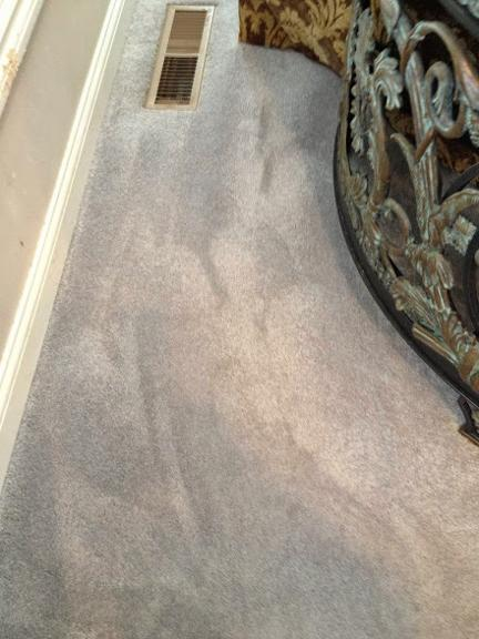 sterling steam carpet cleaning